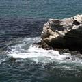 Photos: 岬の突端