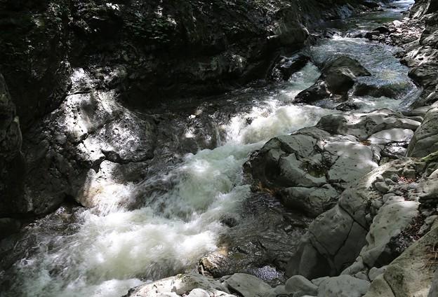 渓谷の木漏れ日
