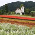 Photos: 高原のチャペル