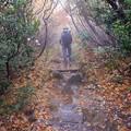 栗駒山へ黙々と登る