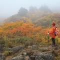 Photos: 栗駒山の美妙な紅葉