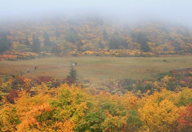 名残ヶ原は霧の中