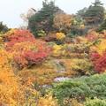 Photos: 栗駒山の紅葉美