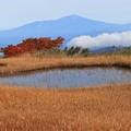 弥陀ヶ原の池塘
