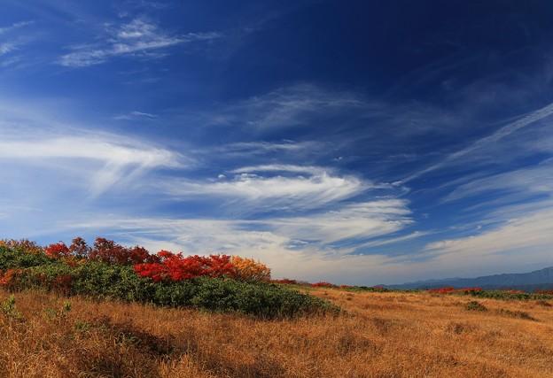 爽やかな秋の空