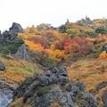 彩る栗駒山