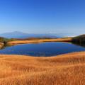 Photos: 鮮麗な夢景観