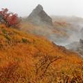 Photos: 源泉の湯煙り