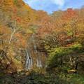 谷間に流れる白糸滝