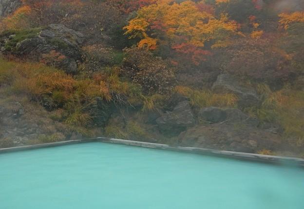 Photos: 紅葉の露天風呂
