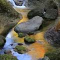Photos: 渓流の彩り