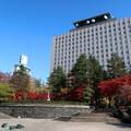 Photos: 杜の都の勾当台公園