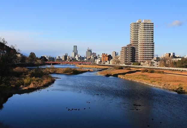広瀬川流れる岸辺