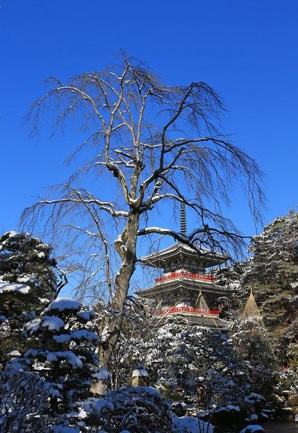 三重塔の雪景色