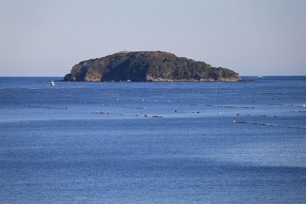 大海原の椿島