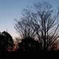Photos: 夜明け