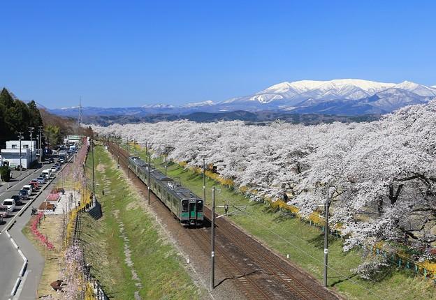 Photos: 壮美な桜絶景