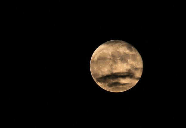 満月に墨の悪戯