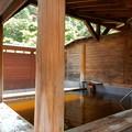 Photos: 森の温泉