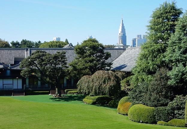 Photos: 和の館