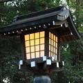 Photos: 和の灯り