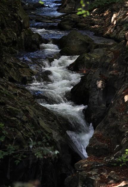 荒沢渓谷の流れ