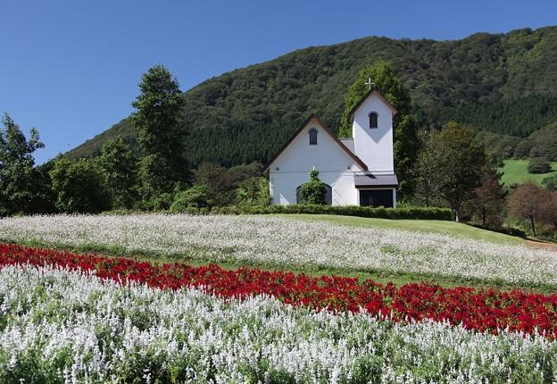 丘の白い教会
