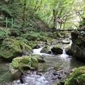 滝へ向かう吊り橋