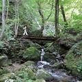 Photos: 渓谷渡れば滝近し