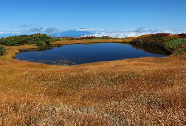 弥陀ヶ原の大きな池塘