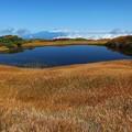 Photos: 弥陀ヶ原の大きな池塘