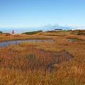 Photos: 湿原を行く