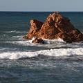 Photos: 笹川流れの岩