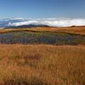 Photos: 草紅葉と雲海と