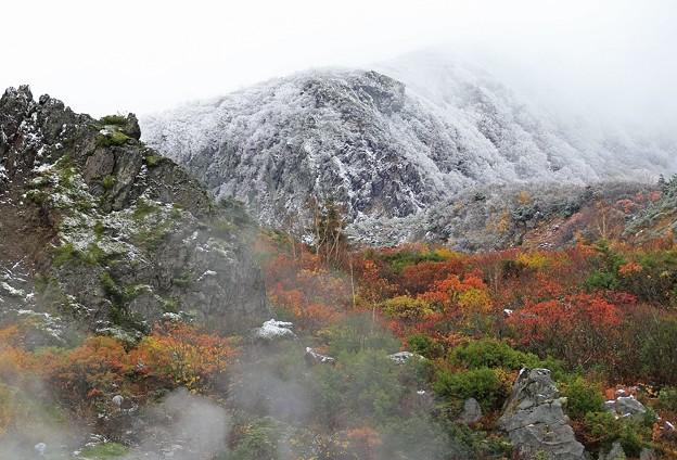 紅葉と初雪の風光