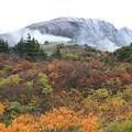 Photos: 錦の秋に雪が降る