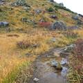 水溜まりの登山道