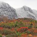 Photos: 秋と冬