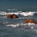 Photos: 打ち寄せる波