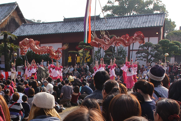 鶴龍 興福寺3