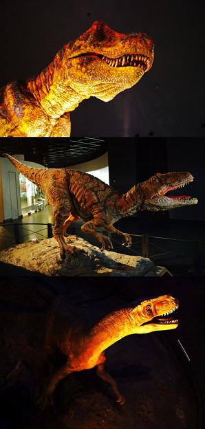 福井県立恐竜博物館-3