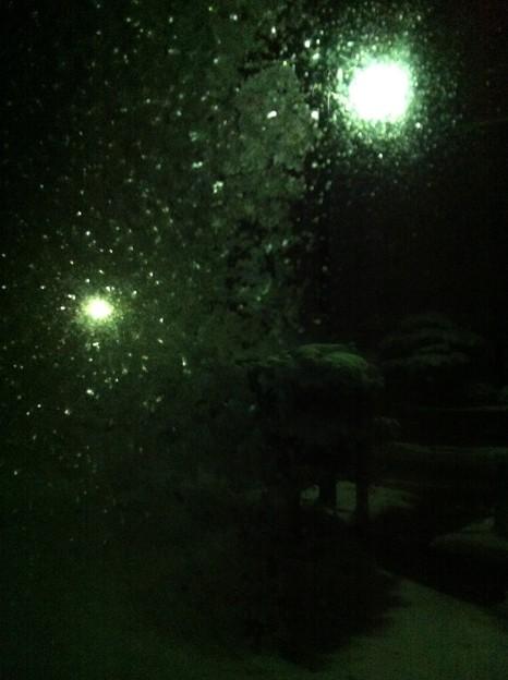 写真: 凍りつく…