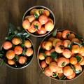 Photos: 柿の収穫 IMG_1800-1