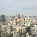 写真: 通天閣展望台から日本橋・難波方面