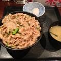 写真: スタミナ丼メガ盛り