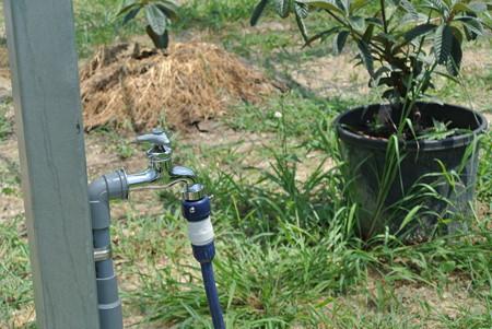 ハウスかん水用蛇口