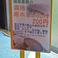 Photos: シイタケ販売用のポップ
