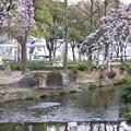 写真: 20080329久屋大通公園