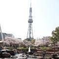 写真: 20100406テレビ塔 (2)
