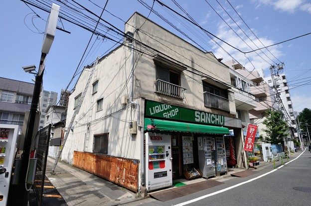 上野DSC_0024_023
